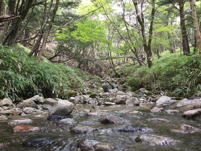 【川】:紀の川(吉野川)がつなぐ水の恵みを受けた特産品